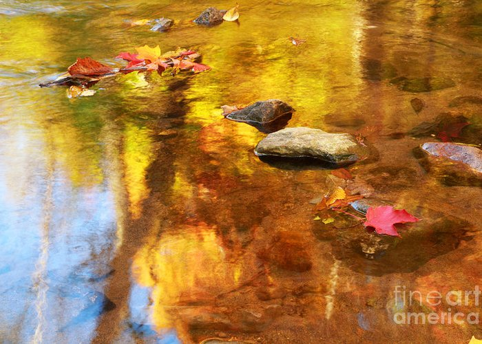 Autumn Greeting Card featuring the photograph Fall Color In Stream by Charline Xia