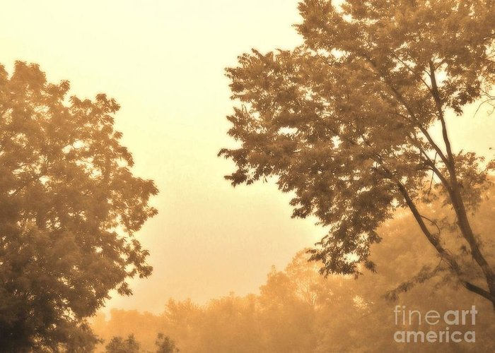 Photo Greeting Card featuring the photograph Fall Foggy Morning by Marsha Heiken