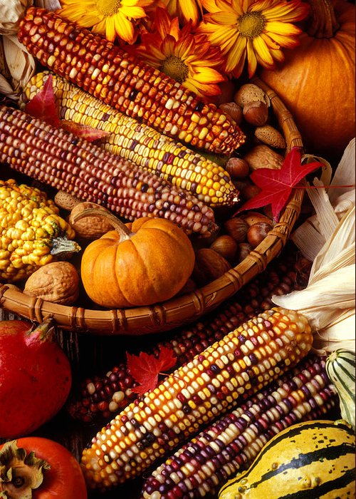 Autumn Greeting Card featuring the photograph Fall Harvest by Garry Gay