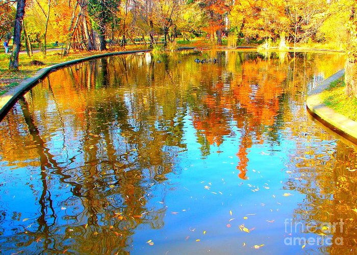 Fall Greeting Card featuring the photograph Fall Reflections by Ana Maria Edulescu