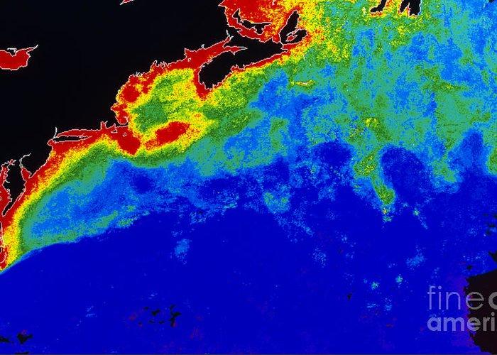 Algal Bloom Greeting Card featuring the photograph False Col Satellite Image by Dr. Gene Feldman, NASA Goddard Space Flight Center