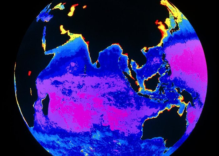 Phytoplankton Distribution Greeting Card featuring the photograph False Colour Image Of The Indian Ocean by Dr Gene Feldman, Nasa Gsfc