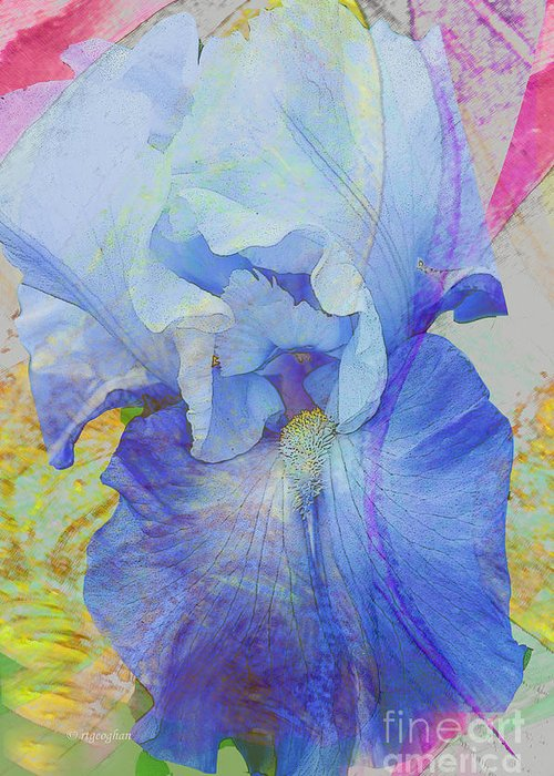 Iris Greeting Card featuring the photograph Fanciful Flowers - Iris by Regina Geoghan