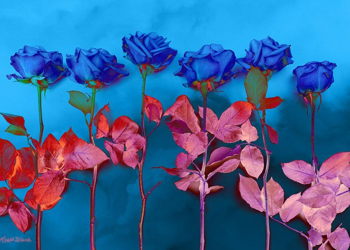 Roses Greeting Card featuring the photograph Fantasy Blues by Michelle Wiarda