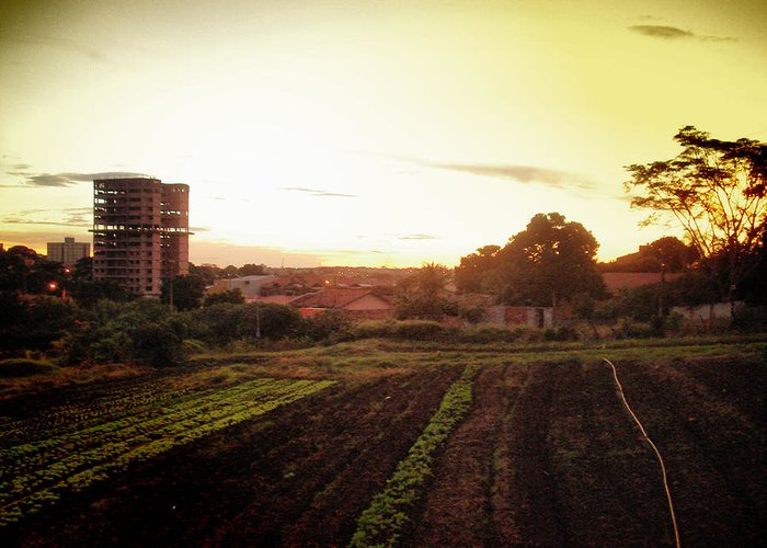 Landscape Greeting Card featuring the photograph Farm City by Beto Machado