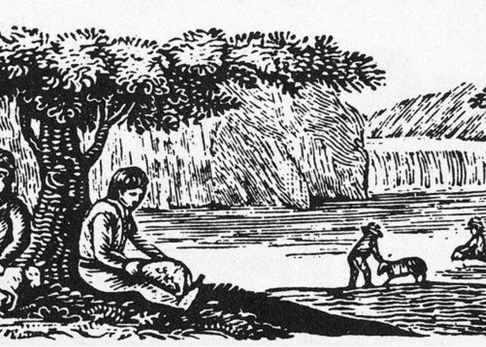 19th Century Greeting Card featuring the photograph Farming: Almanac Cut by Granger