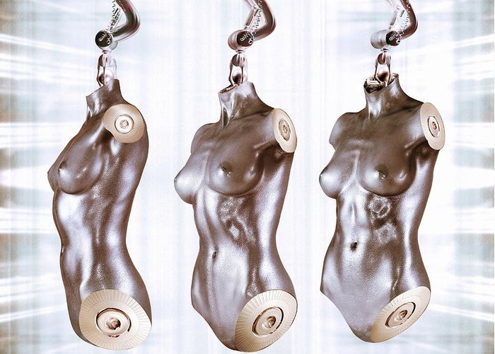 Part Greeting Card featuring the photograph Female Android Torsos by Coneyl Jay