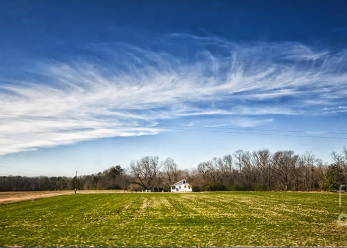 Alexandria Greeting Card featuring the photograph Field And Sky by Jim Moore