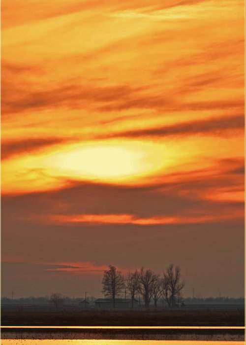 Nature Greeting Card featuring the photograph Fire In The Sky by Debbie Portwood