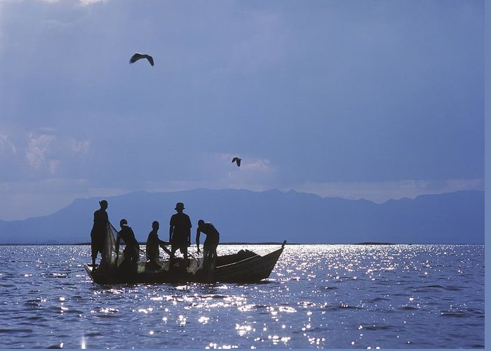 Photography Greeting Card featuring the photograph Fishermen Pulling Fishing Nets On Small by Axiom Photographic