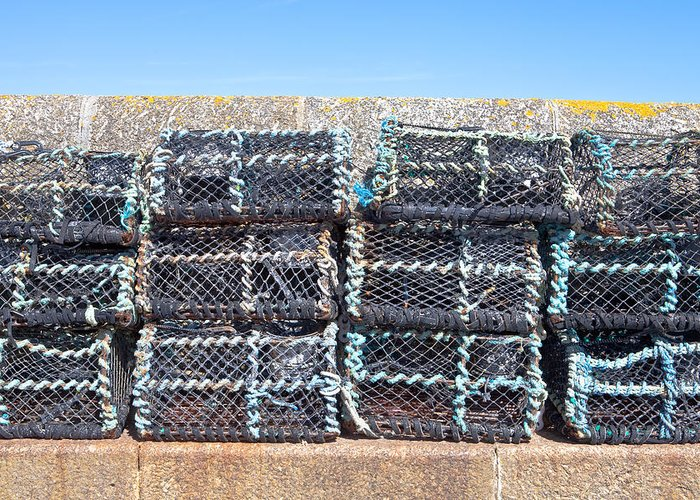 crab Nets Greeting Card featuring the photograph Fishing Baskets by Tom Gowanlock