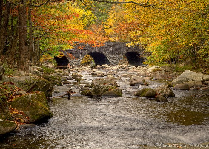Stream Greeting Card featuring the photograph Fishing Bridge I by Charles Warren