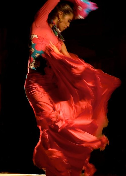 20-30 Greeting Card featuring the photograph Flamenco by Tim Kahane