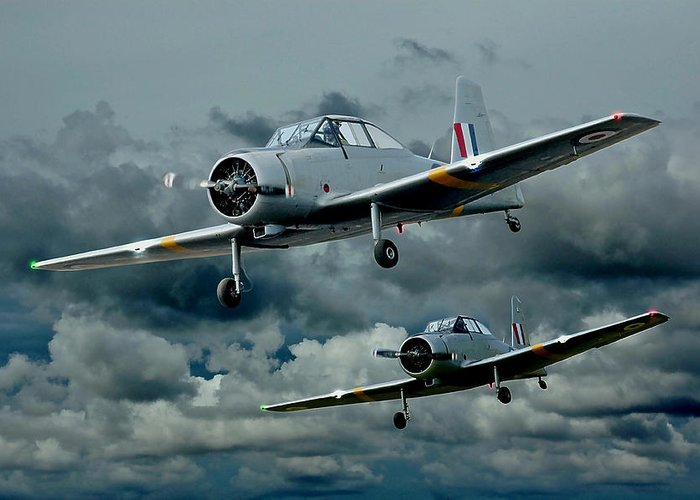 Planes Greeting Card featuring the photograph Flight Of The Winjeels by Steven Agius