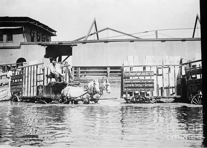 1900s Greeting Card featuring the photograph Flooding On The Mississippi River, 1909 by Library of Congress
