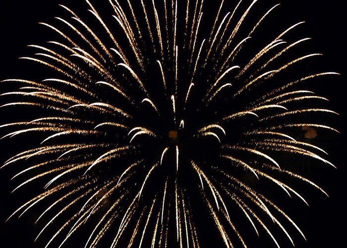 Fireworks Greeting Card featuring the photograph Flower In The Sky2 by Sandi OReilly