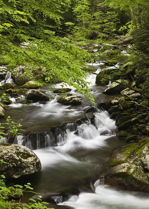 Tremont Greeting Card featuring the photograph Flowing Mountain Stream by Andrew Soundarajan