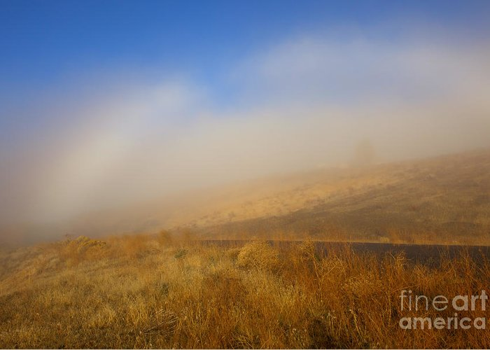 Fog Bow Greeting Card featuring the photograph Fog Bow At Lookout Point by Mike Dawson