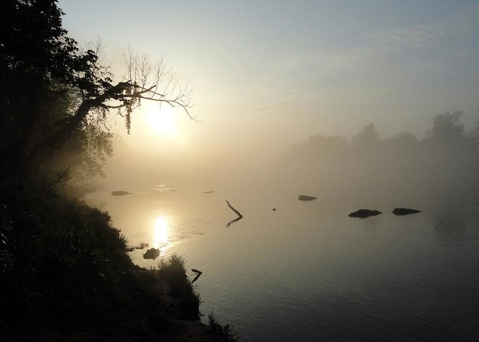 Fog Greeting Card featuring the pyrography Fog On The White River by Heather Owen