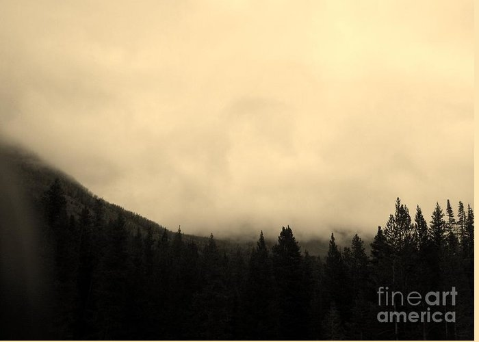 Yellowstone Greeting Card featuring the photograph Foggy Day by Madeline Schneider