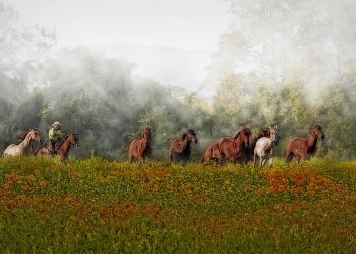Equestrian Greeting Card featuring the photograph Foggy Morning by Susan Candelario