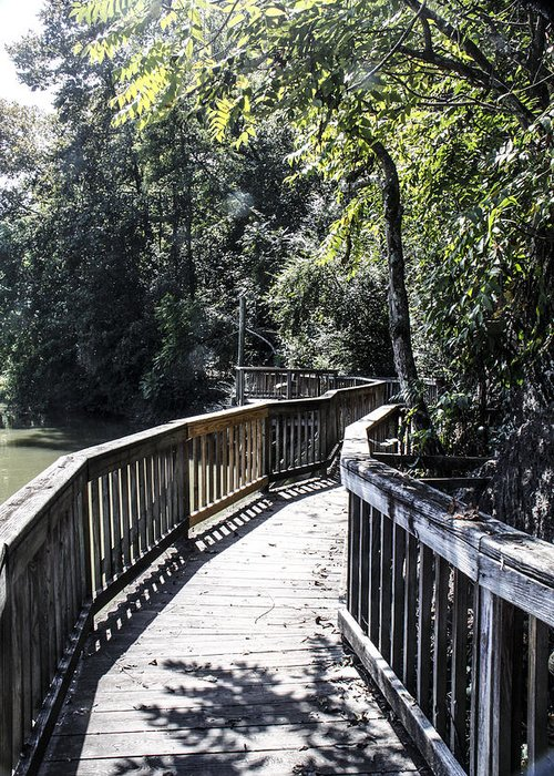 Walkway Greeting Card featuring the photograph Follow The Boardwalk by Linda A Waterhouse