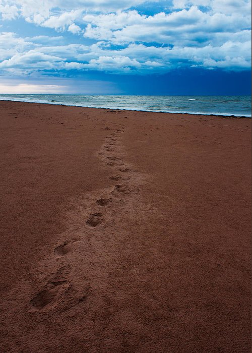 Scenic Greeting Card featuring the photograph Foot Prints To The Sea by Matt Dobson