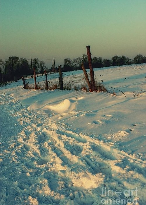 Photo Greeting Card featuring the photograph Footprints In The Snow by Jutta Maria Pusl