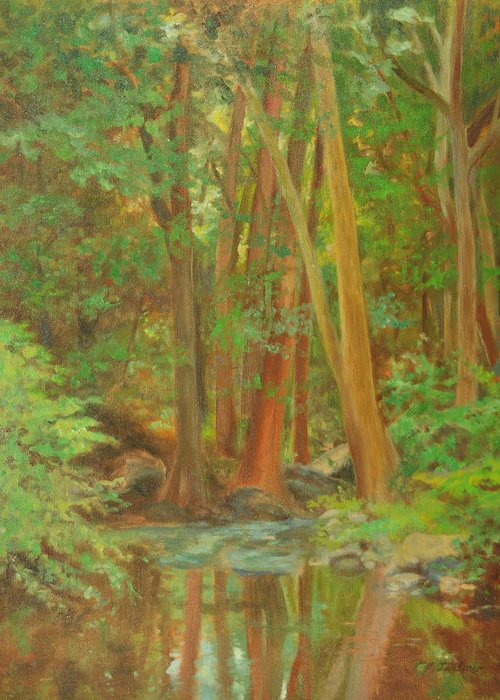 Landscape Greeting Card featuring the painting Forest Reflections by Phyllis Tarlow