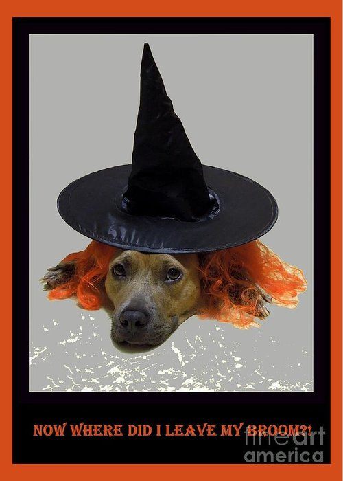 Halloween Greeting Card featuring the photograph Forgetful by Renee Trenholm