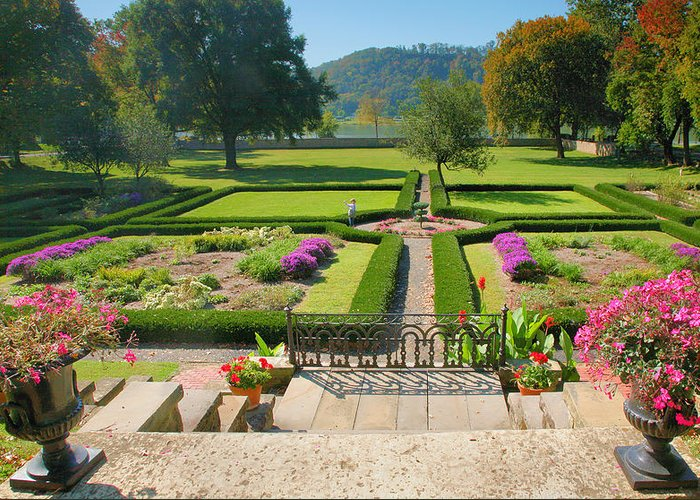 Gardens Greeting Card featuring the photograph Formal Garden I by Steven Ainsworth