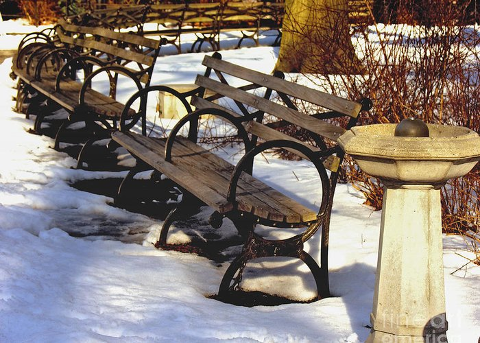 Snow Greeting Card featuring the photograph Fountain And Benches In Snow by Anne Ferguson
