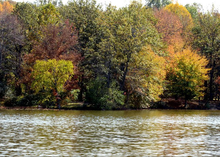 Photographs Greeting Card featuring the photograph Fowler Lake 4 by Franklin Conour