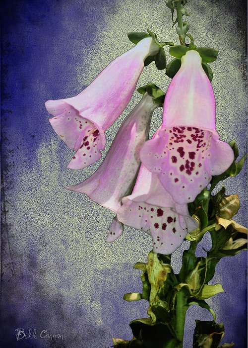 Fox Glove Blue Grunge Greeting Card featuring the photograph Fox Glove Blue Grunge by Bill Cannon