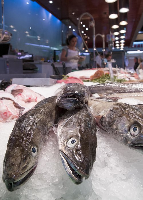 Fish Greeting Card featuring the photograph Fresh Fish On The Market by Matthias Hauser