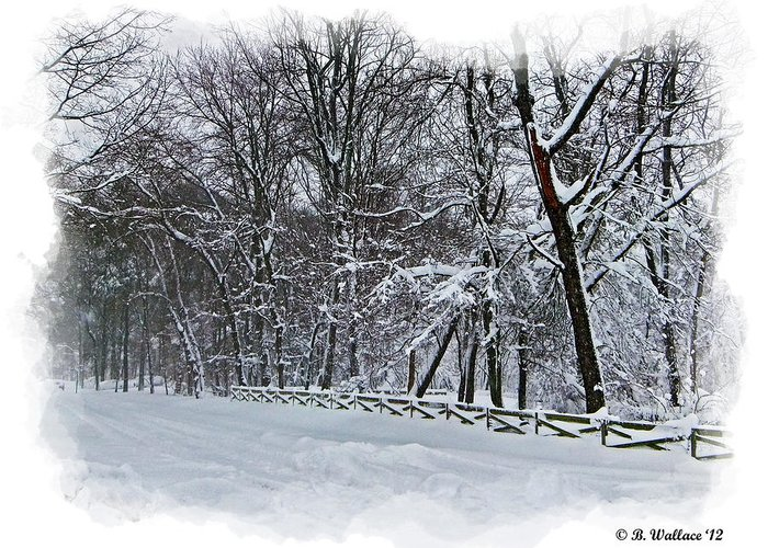 2d Greeting Card featuring the photograph Frigid by Brian Wallace