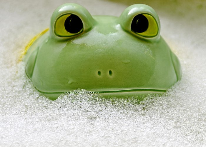 Usa Greeting Card featuring the photograph Frog In The Bath by LeeAnn McLaneGoetz McLaneGoetzStudioLLCcom