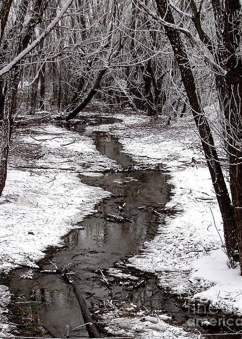 Frosted Stream Greeting Card featuring the photograph Frosted Stream by Laurisa Rabins