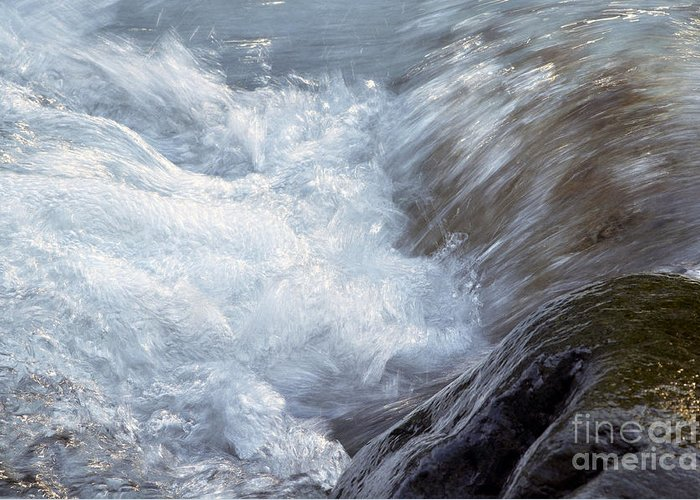 Water Greeting Card featuring the photograph Froth by Sharon Talson