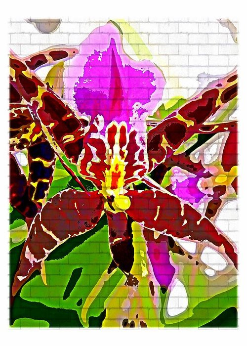 Orchid Greeting Card featuring the photograph Garden Orchid by Mindy Newman