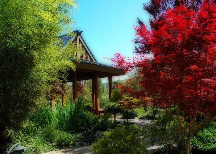 Gardens Greeting Card featuring the photograph Garden Retreat by Lynn Bauer