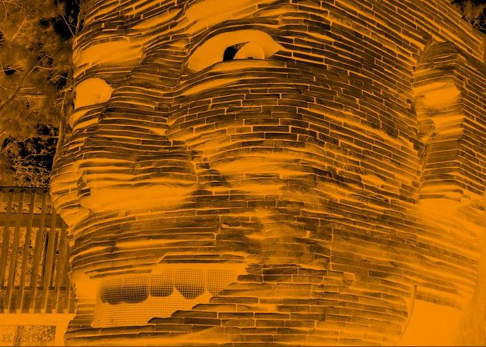 Architecture Greeting Card featuring the photograph Gentle Giant In Negative Orange by Rob Hans