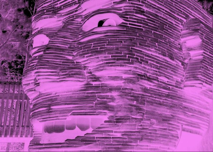 Architecture Greeting Card featuring the photograph Gentle Giant In Negative Pink by Rob Hans