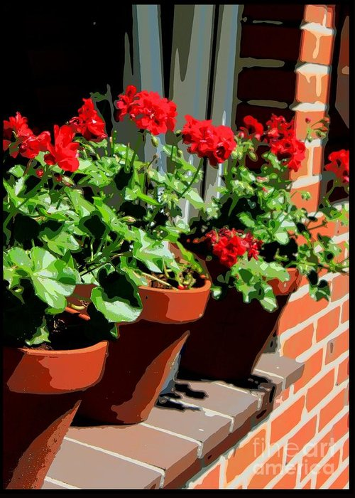 Geraniums Greeting Card featuring the photograph Geraniums In Germany by Carol Groenen
