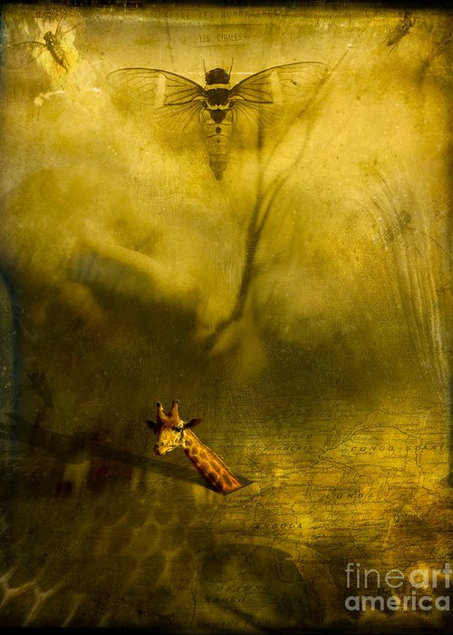 Giraffe Greeting Card featuring the photograph Giraffe And The Heart Of Darkness by Paul Grand