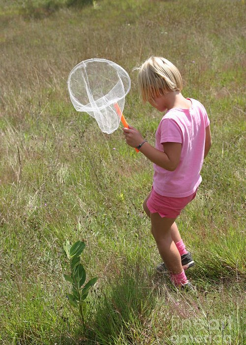 Science Greeting Card featuring the photograph Girl Collecting Insects In A Meadow by Ted Kinsman