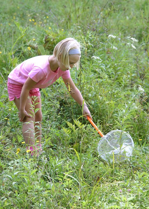 Science Greeting Card featuring the photograph Girl Collects Insects In A Meadow by Ted Kinsman