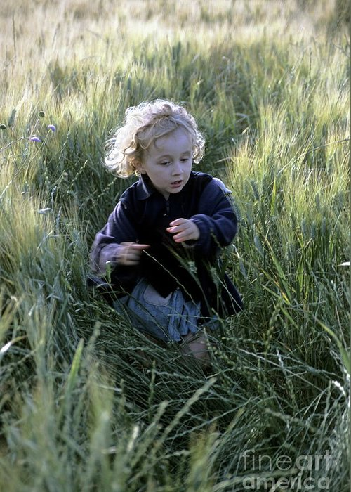 People Greeting Card featuring the photograph Girl Running In Wheat Field by Sami Sarkis