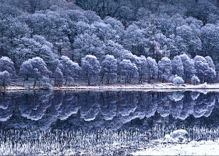 Frost Greeting Card featuring the photograph Glendalough National Park, County by Richard Cummins