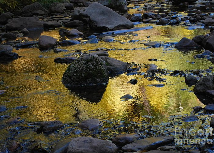 Sedona Greeting Card featuring the photograph Golden Fall Reflection by Heather Kirk